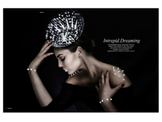 ' intrepid dreaming 'millinery hat couture  makeup art  editorial published
